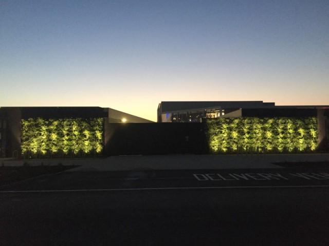 Living wall lighting Thorpe Park